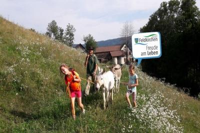 Feldkirchen in Kärnten im Sommer