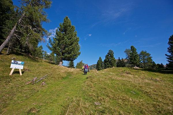 Alpine Vielfalt zwischen Bergen & Seen